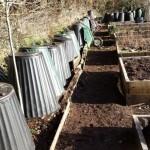 vegetable garden  (2)