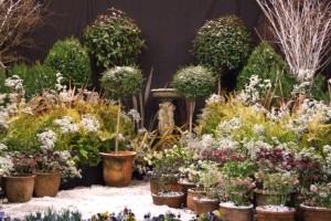 winter gardening weekend 2009-3