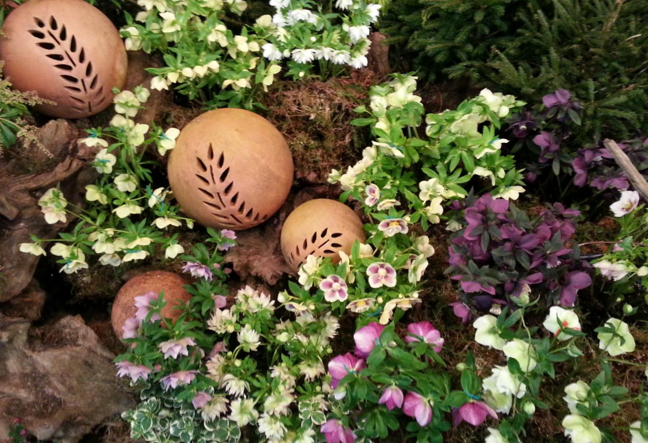 winter gardening weekend 2014-4