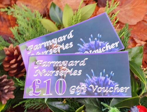 Farmyard Nurseries Gift Vouchers