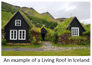 A green roof in Iceland