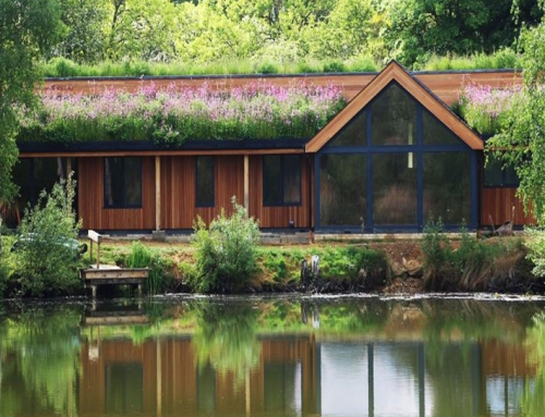 Living Roofs – More Than Just a Green Trend