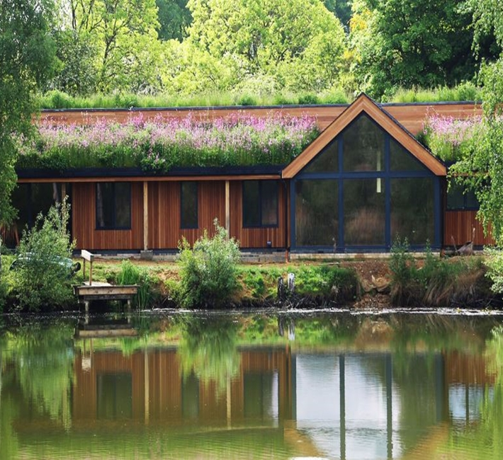 living roof by the lake